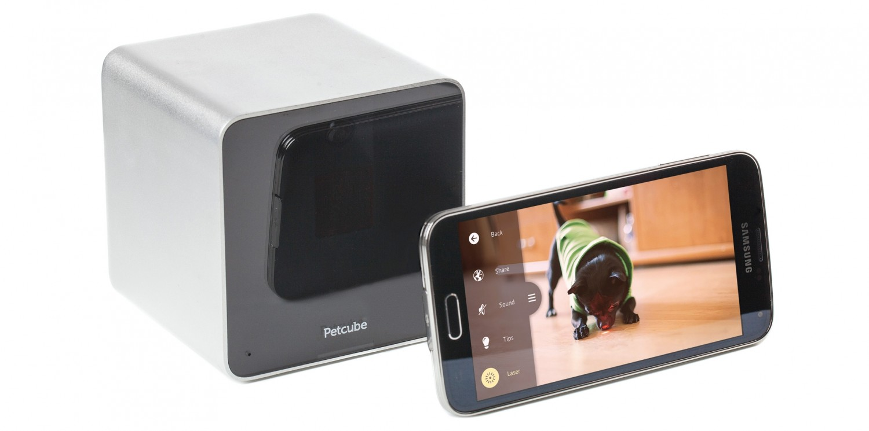 test ip kamera petcube p161wb5m sehr gut. Black Bedroom Furniture Sets. Home Design Ideas